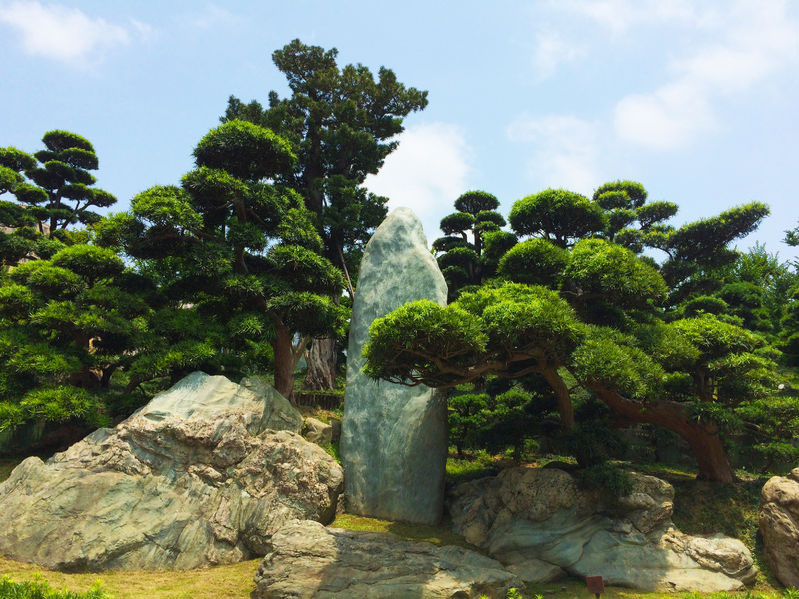 géobiologie - zen garden park
