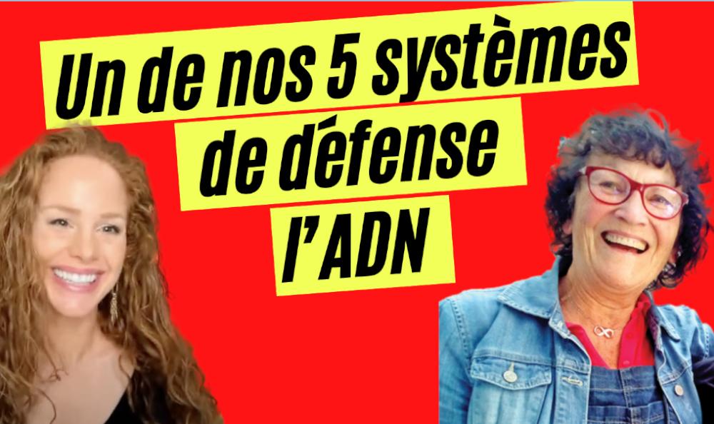 22 septembre à 20H00: Un de nos 5 systèmes de défense : l'ADN